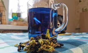 Чай Анчан. Синий чай